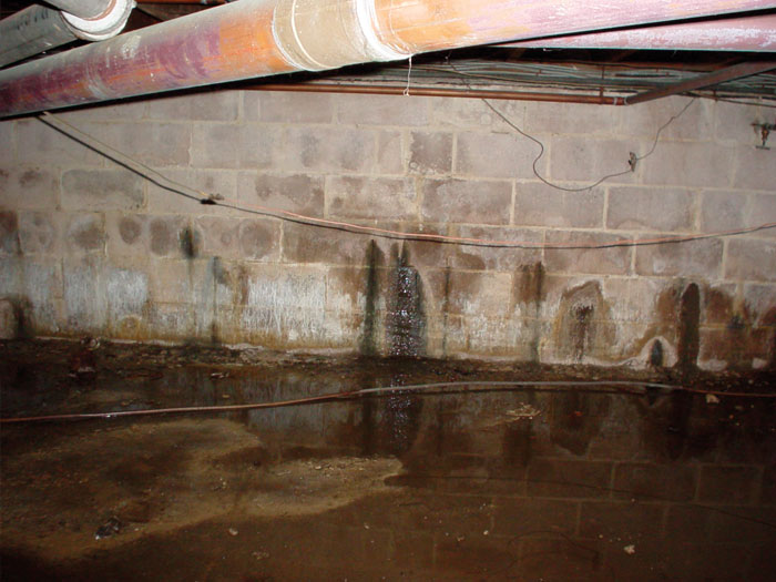 leaking-basement-wall-problem-lg